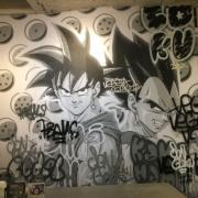 Street Goku VS Street Végéta